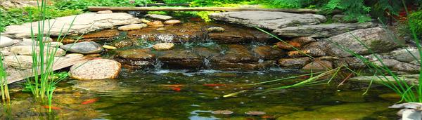 stone pond with fish_908x260-600x480.jpg