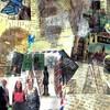 In the Footsteps of Anne Frank--Ellen Goldberg Tishman in Sarasota Florida