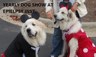 mick-and-min-dog-SHOW-600x480.jpg