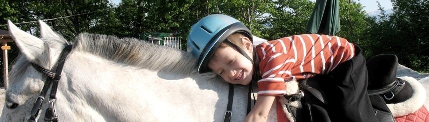 horse-hug-857x245.jpg
