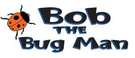 Bob-the-Bug-Man-600x480.jpg